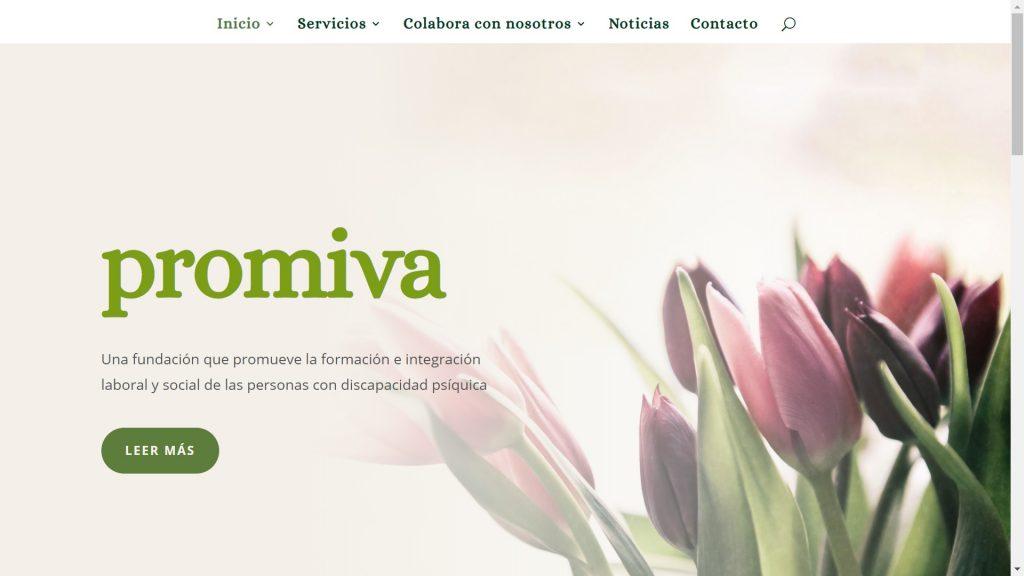 Sitio web de Promiva